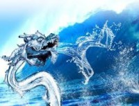 image of water dragon